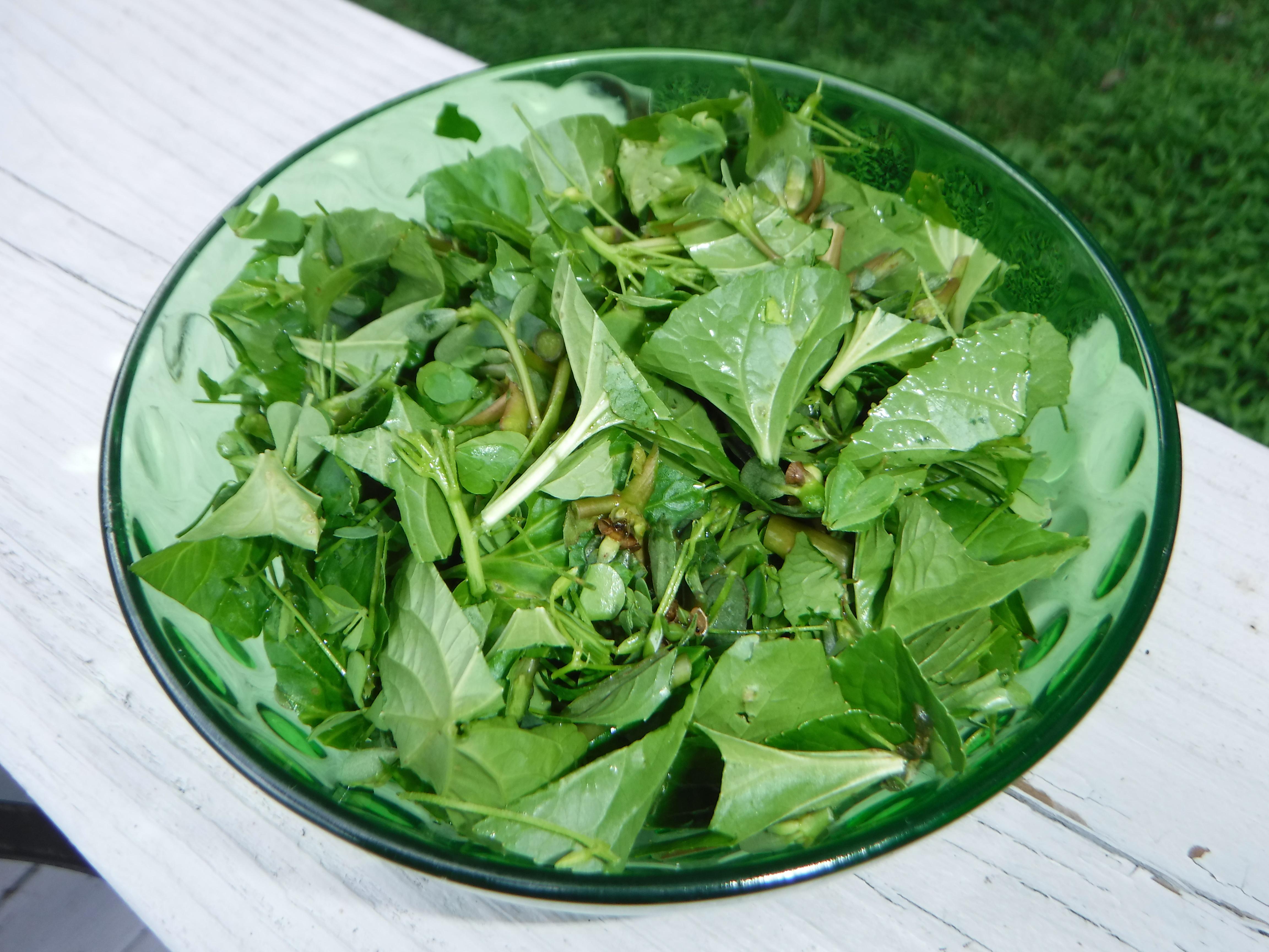 Amazing Weed Salad