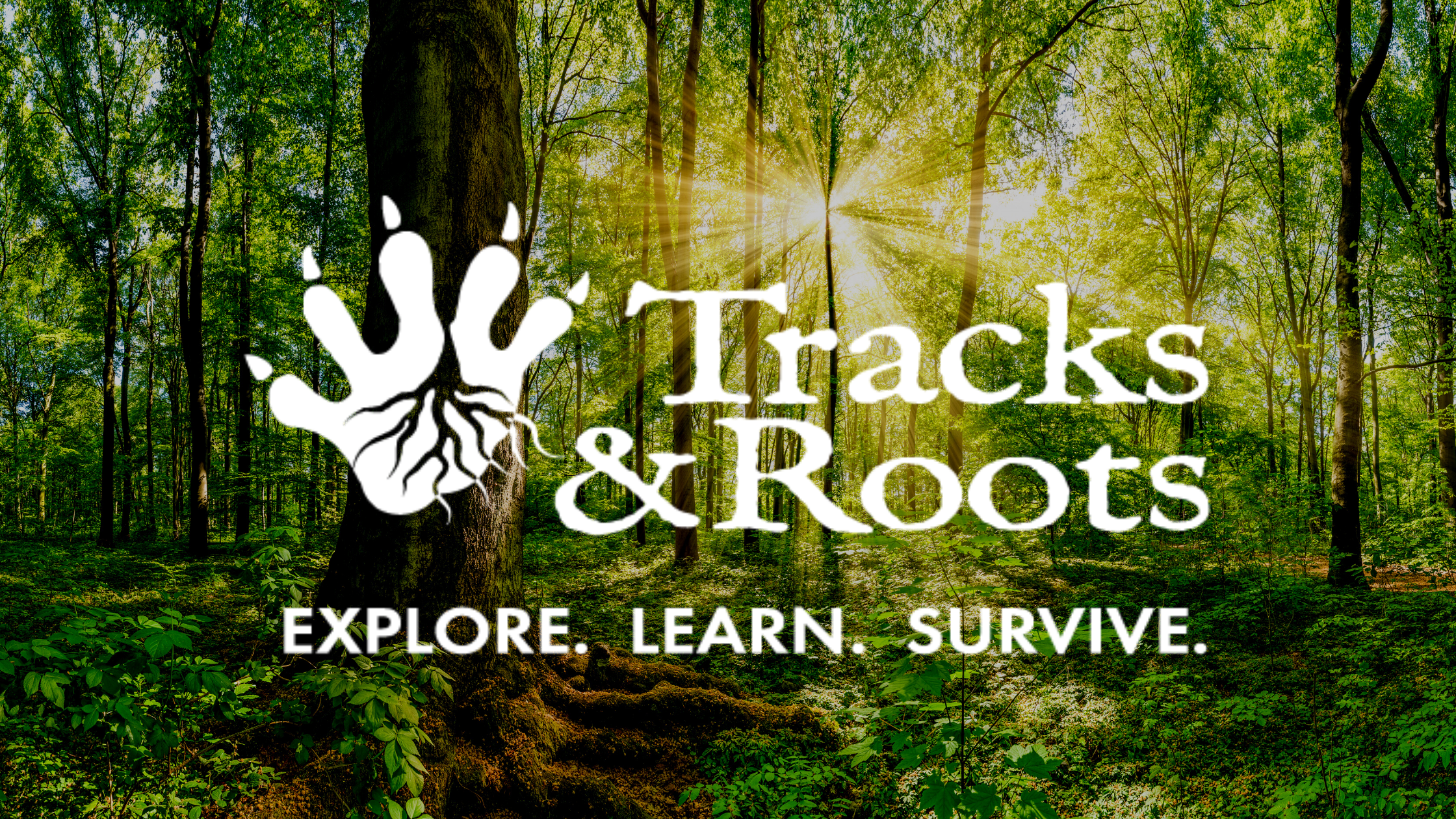 Tracks and Roots